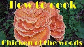 getlinkyoutube.com-How to cook Chicken of the Woods Mushrooms