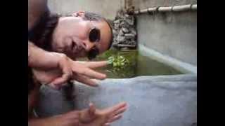 getlinkyoutube.com-como tirar a agua verde (com algas) filtro+uv