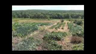 getlinkyoutube.com-ЭМ-технология для выращивания кроликов, индюков, гусей и др.