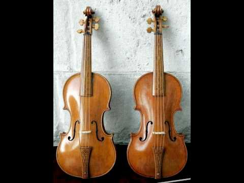 (1) J.S. Bach - Double Violin Concerto in d minor, BWV 1043 (Andrew Manze &amp; Rachel Podger)