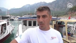 Antalya'da balıkçının oltasına 5 metrelik köpek balığı takıldı