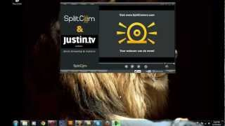 Skype and SplitCam. If SplitCam doesn't work with Skype
