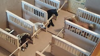 getlinkyoutube.com-How to make Schleich / Breyer Horse Stall Dividers, for a Box Barn.
