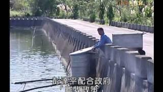 getlinkyoutube.com-客家新聞雜誌 210集 無毒台灣鯛達人
