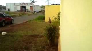 getlinkyoutube.com-Velha Cagando part 1