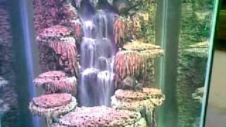 getlinkyoutube.com-air terjun