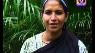 getlinkyoutube.com-Krishidarshan Malayalam 26-11-2015