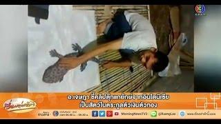 getlinkyoutube.com-เรื่องเล่าเช้านี้ อ.เจษฎา ชี้คลิปตุ๊กแกยักษ์จากอินโดนีเซีย เป็นสัตว์ในตระกูลตัวเงินตัวทอง (7 พ.ค.58)