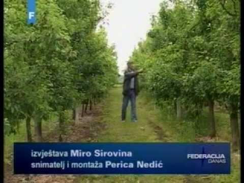 Posavski brend (FTV).avi