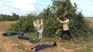getlinkyoutube.com-Wow! Amazing children Catches Cobra Snake In Hold Using Bare Hand - How To Catch Snake In Cambodia