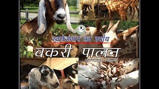 getlinkyoutube.com-Goat Farming (बकरी पालन)