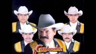 getlinkyoutube.com-Los Cardenales De Nuevo León Mix ( EN VIVO)