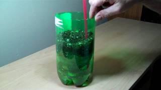 getlinkyoutube.com-2 liter bottle self watering experiment DIY