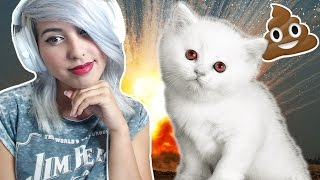getlinkyoutube.com-EVIL KITTY SIMULATOR   Kitten Rampage