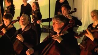 Richard Strauss: Metamorphosen for 23 strings