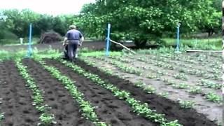getlinkyoutube.com-mini cultivadora ( demostración)
