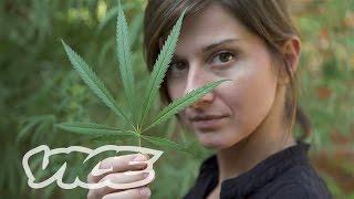 getlinkyoutube.com-Serbian Cannabis: Between Pain and the Law