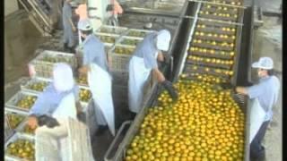 getlinkyoutube.com-GMP น้ำผลไม้