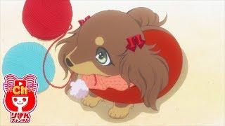 getlinkyoutube.com-りぼんオリジナルアニメ「チョコタン!」
