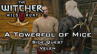 getlinkyoutube.com-The Witcher 3: Wild Hunt - A Towerful of Mice - Side Quest - Velen