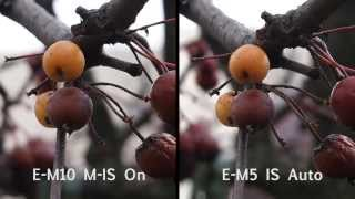 getlinkyoutube.com-Olympus OM-D E-M10 vs OM-D E-M5: 3-axis stabilisation compared
