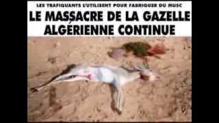 getlinkyoutube.com-البيئة الجزائرية في خطر من قطر و أعراب الخليج 02