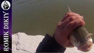 Не рыбалка.  Мартовский выезд на реку Или. Акколь.