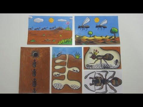 كيف تقضي على النمل ?