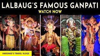 Lalbaug All Famous Ganpati 2017 - Lalbaugcha Raja, Mumbaicha Raja, Tejukaya, Narepark, Mahaganpati