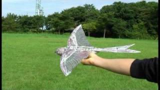 getlinkyoutube.com-Swift F7 :  Low-altitude GOOD Flight