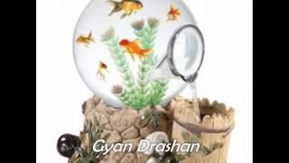 घर में Fish Aquarium है तो इन बातों का ध्यान रखें | Ghar Mein Machli Hai to Kya Kare