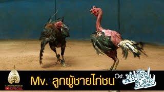 getlinkyoutube.com-Mv. ลูกผู้ชายไก่ชน - Ost. มนต์เลิฟสิบหมื่น (Official Mv.)