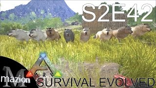 getlinkyoutube.com-ARK: Survival Evolved - Taming a pack of Dire Wolves! S2E42 Gameplay