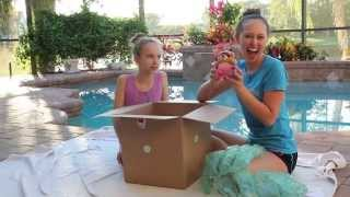 SURPRIZE REBORN BABY BOX OPENING!!! ||  Serenity by Laura Lee Eagles