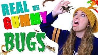 getlinkyoutube.com-REAL vs Gummy BUG EATING Challenge 🕷️🤢 | Brooklyn and Bailey