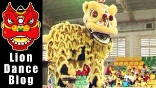 getlinkyoutube.com-2008 Lion Dance Competition - Indonesia and China Eli town yuan Temple Lion Dance