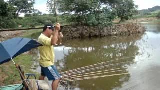 getlinkyoutube.com-Pescaria de tilápias gigantes - Parte 2.