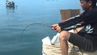 getlinkyoutube.com-ตกปลากระเบน อ่าวขนอม