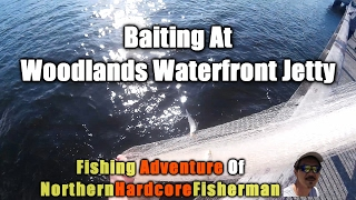 getlinkyoutube.com-Malaysia Fishing Trip Desaru Part 1 : Baiting At Woodlands Waterfront Jetty    FishingAdvNHF