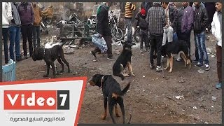 getlinkyoutube.com-بالفيديو   الأمطار والبرد القارص يصيبان «سوق الجمعة» بالشلل لتام