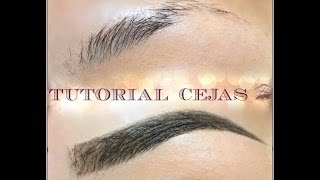 TUTORIAL para  CEJAS  PERFECTAS / PERFECT EYE BROW  TUTORIAL  | auroramakeup