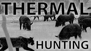 getlinkyoutube.com-Best Thermal Night Hunting Videos with the REAP-IR