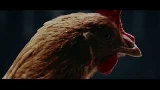 getlinkyoutube.com-Mercedes Benz Funny dancing Chicken Ad :)