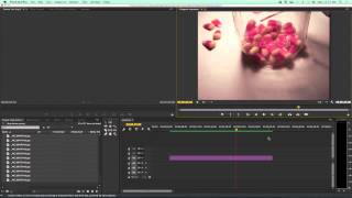 How to make a Stop Action Video in Premiere Pro CC Stop Motion Animation