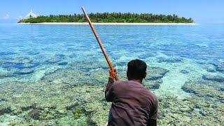 getlinkyoutube.com-Indonesia ( travel & spearfishing!!!! )