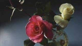 getlinkyoutube.com-Enya - China Roses
