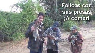 getlinkyoutube.com-Caza de conejos con rifle de aire comprimido