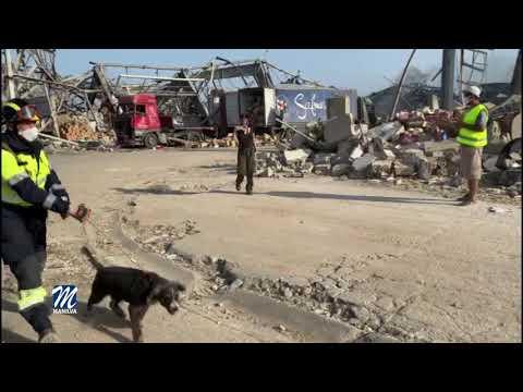Especialistas españoles trabajan en la catástrofe de Beirut
