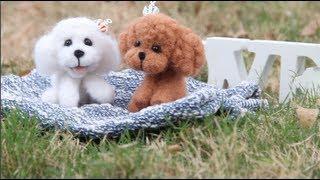 getlinkyoutube.com-DIY Cute Poodle Plushie