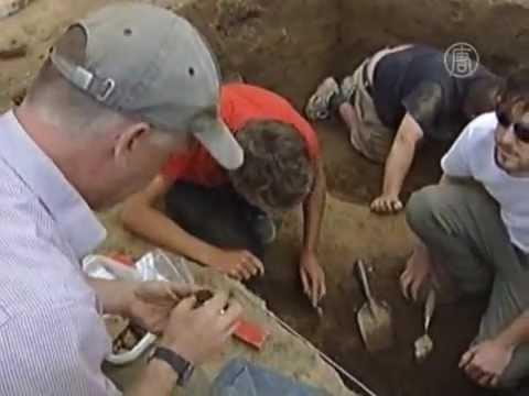 Монетный клад найден на ферме